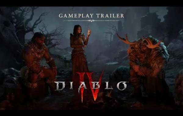 Diablo 4: 5 Courses Which Will Not Likely Be Included at Launch