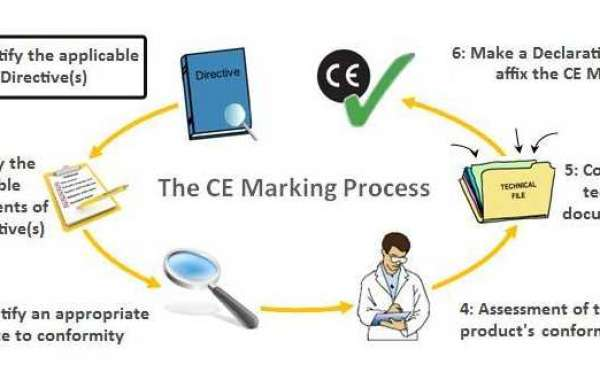 European CE Marking Strategy for Medical Devices